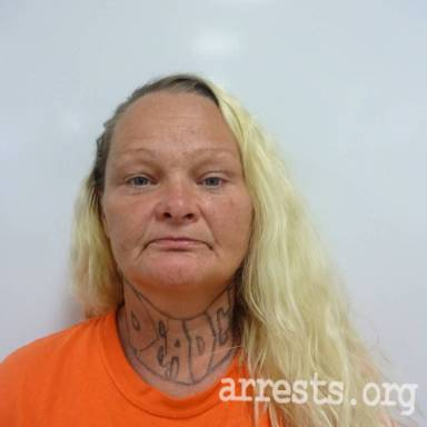 Gina Pillow Arrest Photo