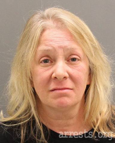 Lynne Sears Mugshot | 05/01/18 Michigan Arrest