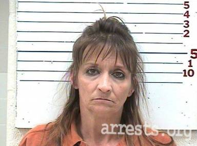 Shelly Anderson Arrest Photo