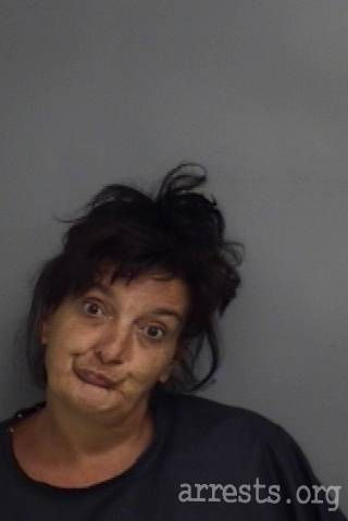 Cynthia Donahue Arrest Photo