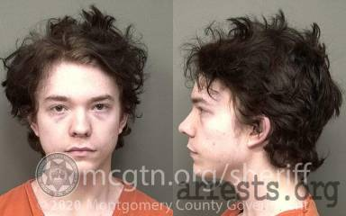 Logan Browning Arrest Photo
