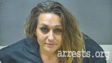 Mary Toler Arrest Photo